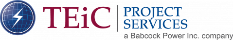TEiC Project Services Logo