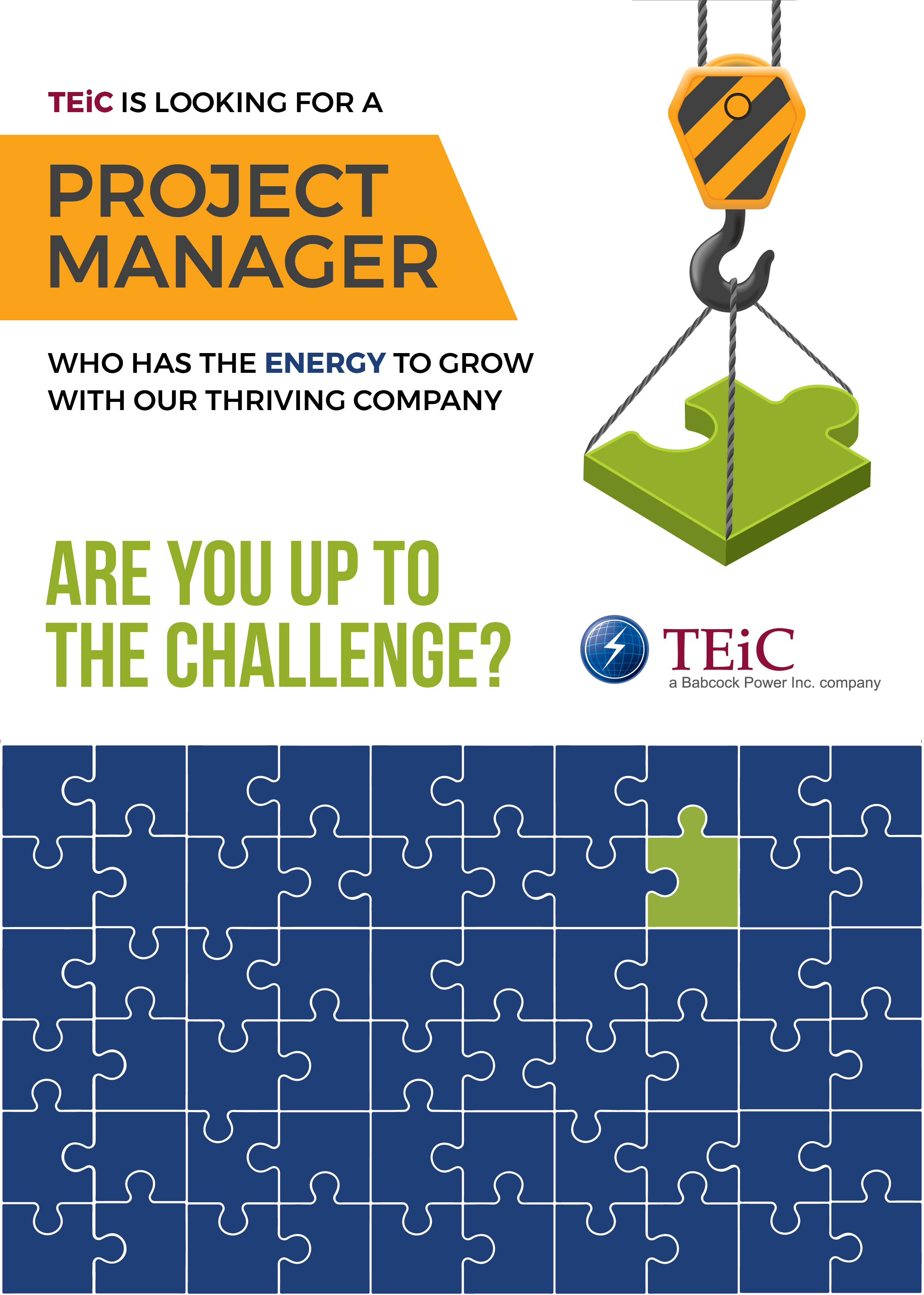 TEiC Project Manager